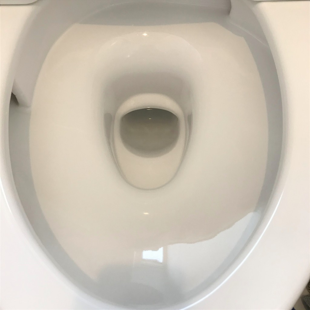 裏 トイレ 黒ずみ ふち の